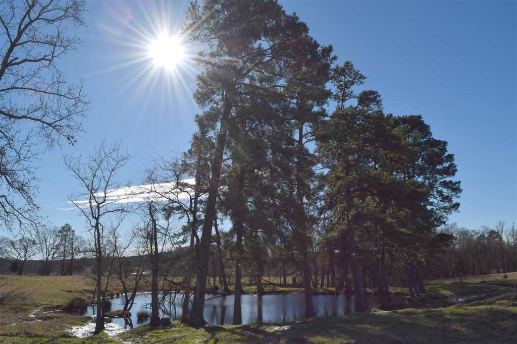 Photo of home for sale at TBD County Road 1453, Linden TX